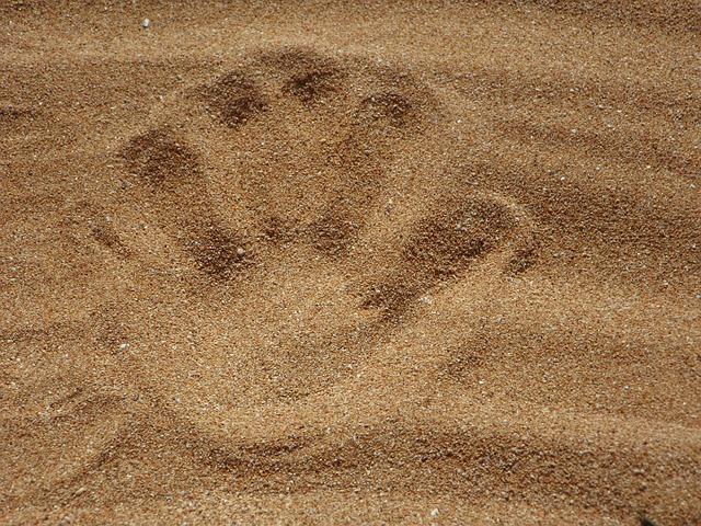 Zabawy na piasku rozwijają wszystkie zmysły