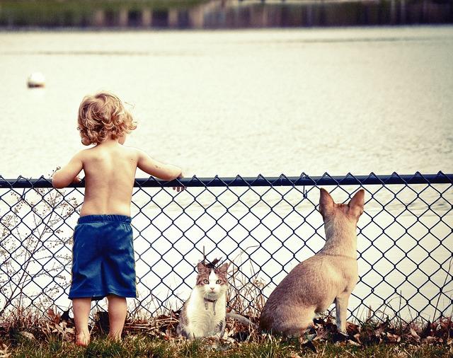 Uczulenie na pokarm, pyłki traw, sierść i ślinę zwierząt - dzieci coraz częściej mają alergie.