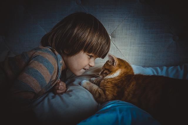 Kot i dziecko mogą się dogadać i żyć obok siebie